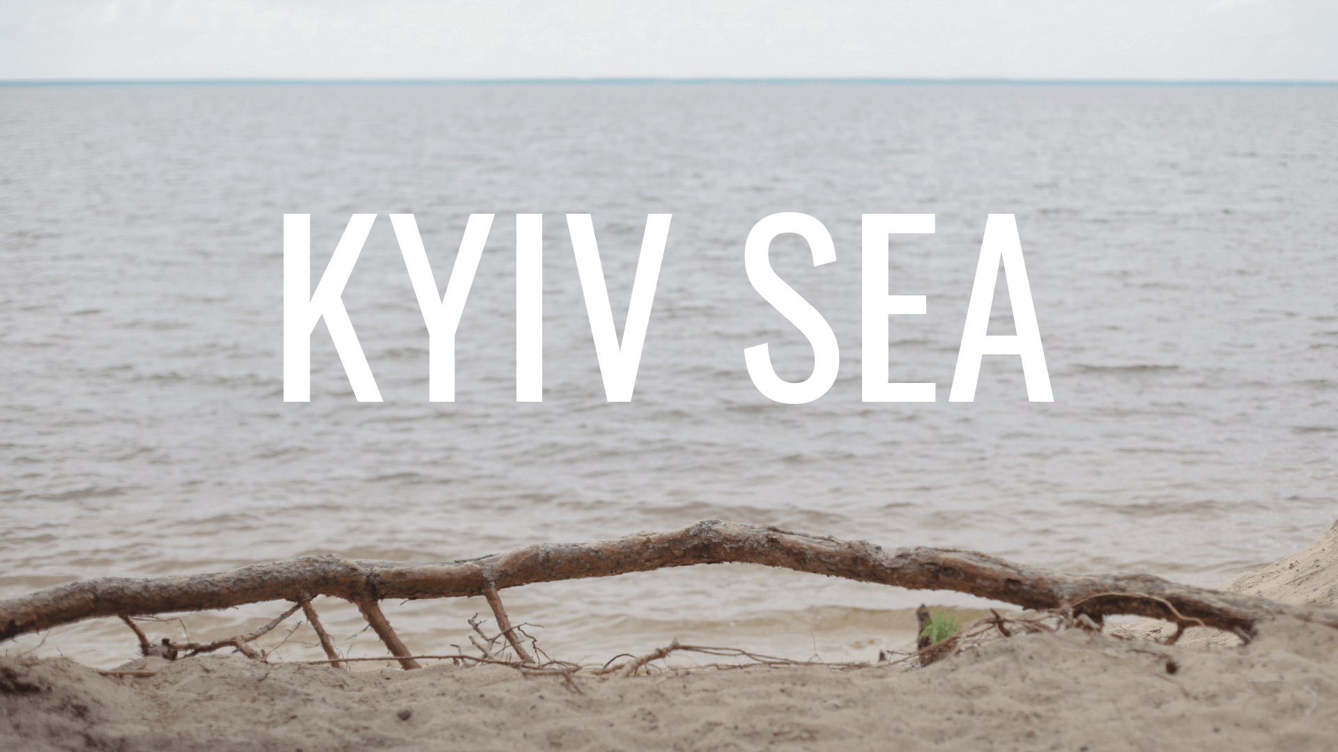 WISWILAS|KYIV SEA